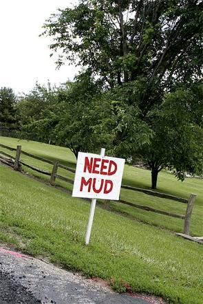 Needmud_3